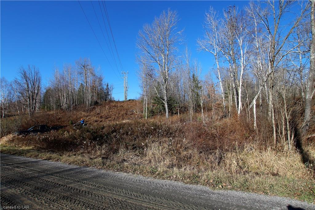 NA ODORIZZI Road, Golden Valley, Ontario (ID 40041620)