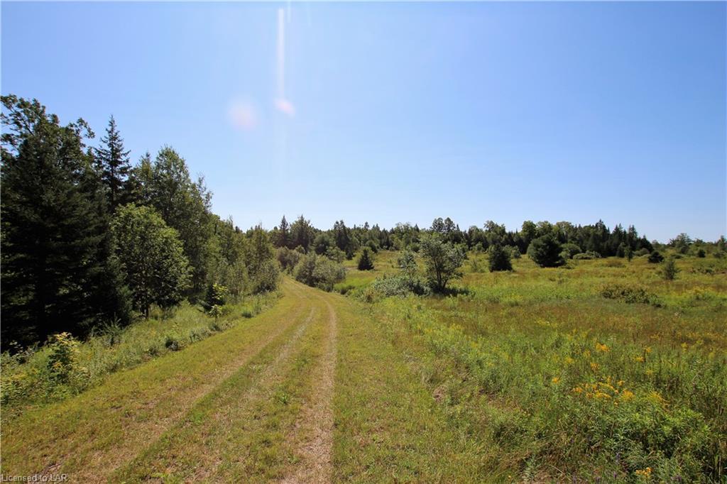 196 TRAILAINE Road, Arnstein, Ontario (ID 40049061)
