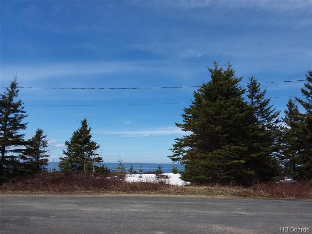 Lot 5 Beach Drive, Salmon Beach, New Brunswick (ID NB021330)