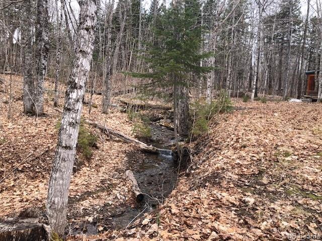 350 Bloomfield Ridge Road, Bloomfield, New Brunswick (ID NB056701)