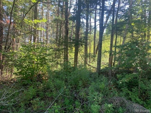 LOT Lower Durham Road, Lower Durham, New Brunswick (ID NB038979)