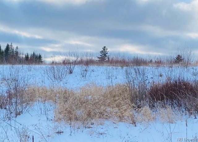- Alison Boulevard, Fredericton, New Brunswick (ID NB052830)