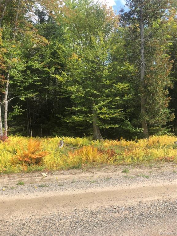 06-5 Wilkins Lane, Scotch Settlement, New Brunswick (ID NB042341)