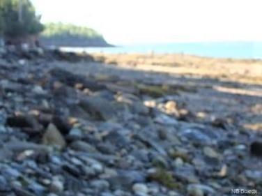 LOT Route 127, Bayside, New Brunswick (ID NB053866)