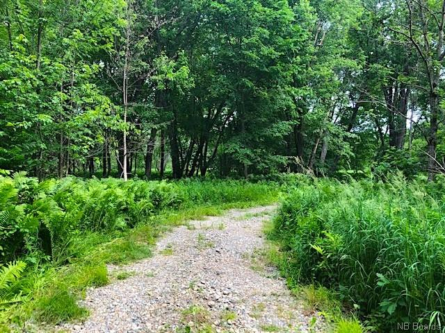 LOT 5 8 Route, Blissfield, New Brunswick (ID NB038852)