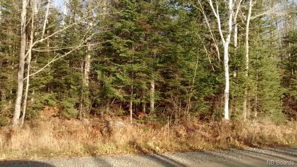 LOT 92-9 Hurlett Road, Estey`s Bridge, New Brunswick (ID NB040903)