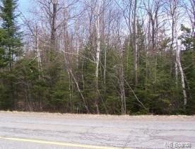 LOT 7 Royal Road, Kingsley, New Brunswick (ID NB049279)