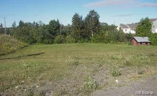 295 Connell Street, Woodstock, New Brunswick (ID NB049590)