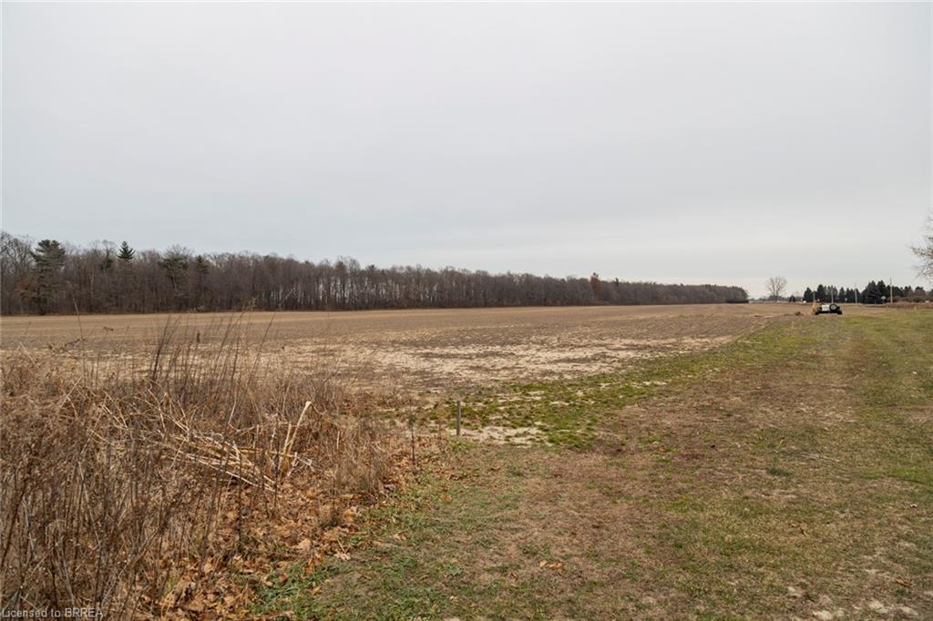 737 HILLCREST Road, Simcoe, Ontario (ID 40052097)