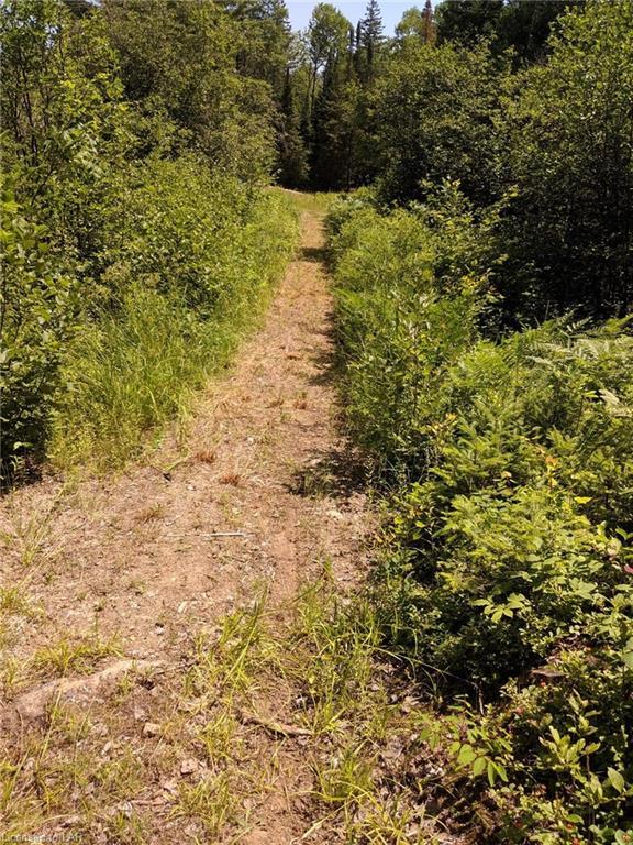 TATTERSAL Road, Haliburton, Ontario (ID 211432)
