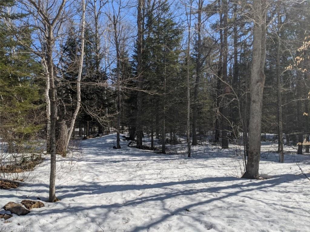 SPAR LAKE Road, Norland, Ontario (ID 253018)