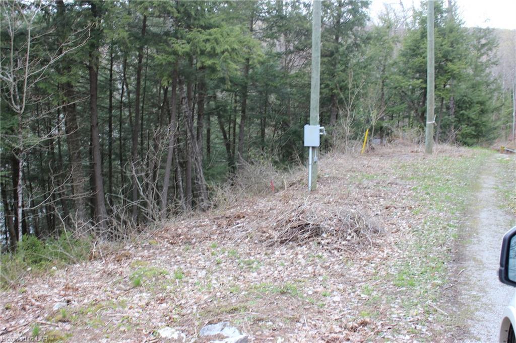 MINERAL Lane, Irondale, Ontario (ID 40108128)