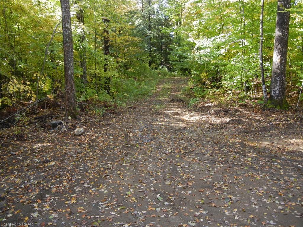 1 WINTER'S BAY ESTATES Road, North Kawartha Township, Ontario (ID 181159)