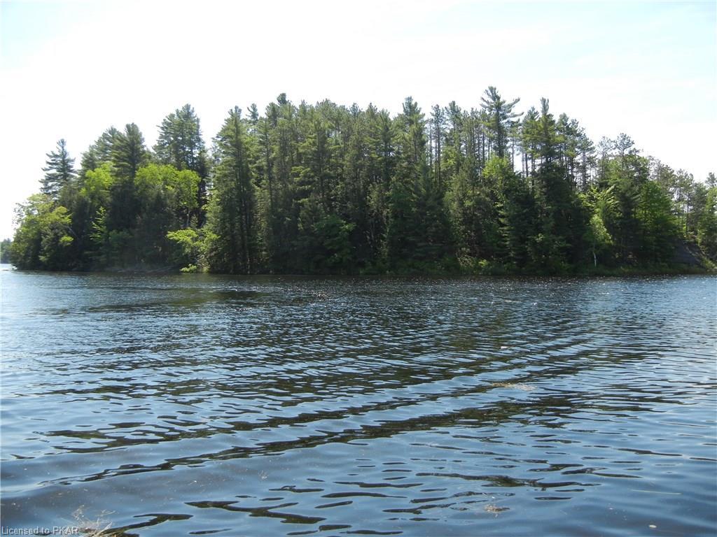 3 LONG LAKE HONEY ISLAND, North Kawartha Township, Ontario (ID EXCLUSIVE)