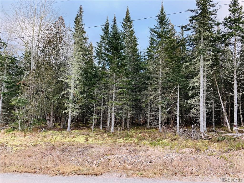Lot #4 Castlewood Drive, Lakeside, New Brunswick (ID NB052249)