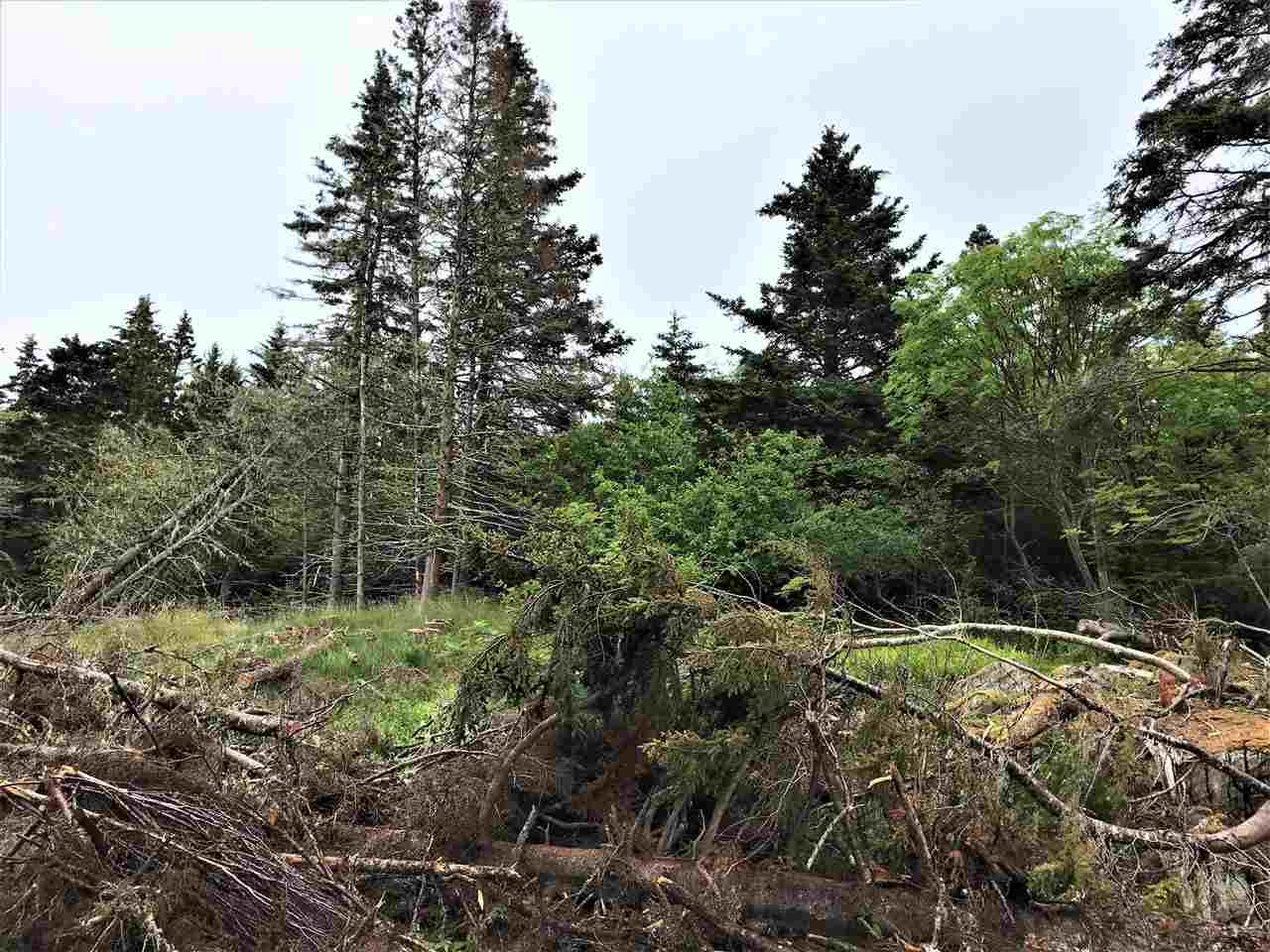 Lot 23 Highway 331, West Dublin, Nova Scotia (ID 202012278)