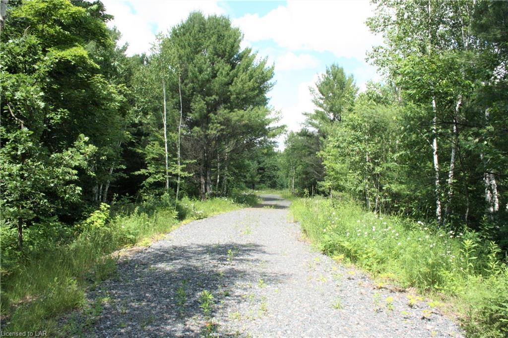 LOCH ERNE Road, Mcdougall, Ontario (ID 40136728)