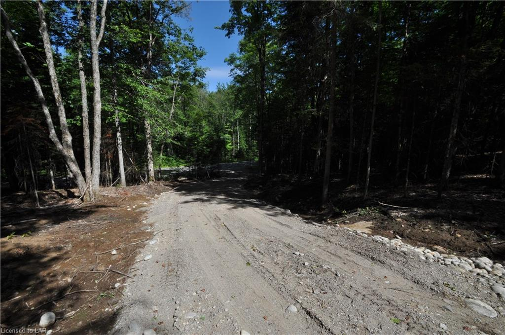 2586 STISTED Road S, Sprucedale, Ontario (ID 215644)
