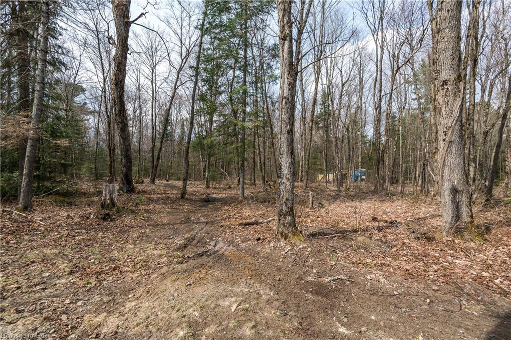 176 RIPPLE Lane, Huntsville, Ontario (ID 40096109)