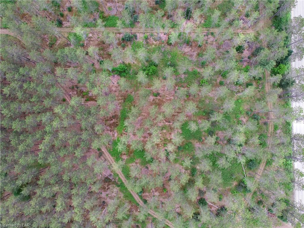 YEARLEY Road, Sprucedale, Ontario (ID 40126969)