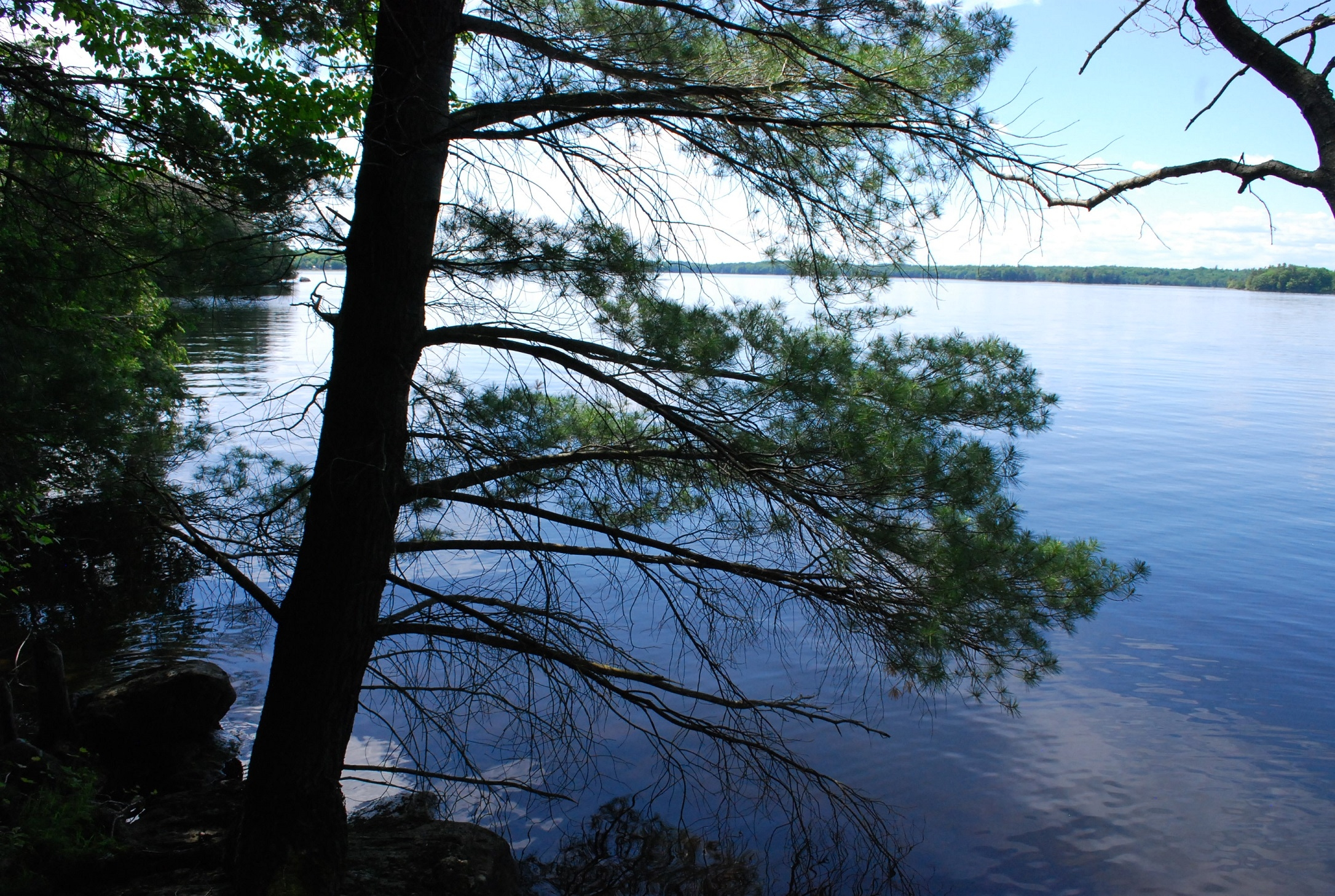 Pine Lane, Bobs Lake, Godfrey, Ontario