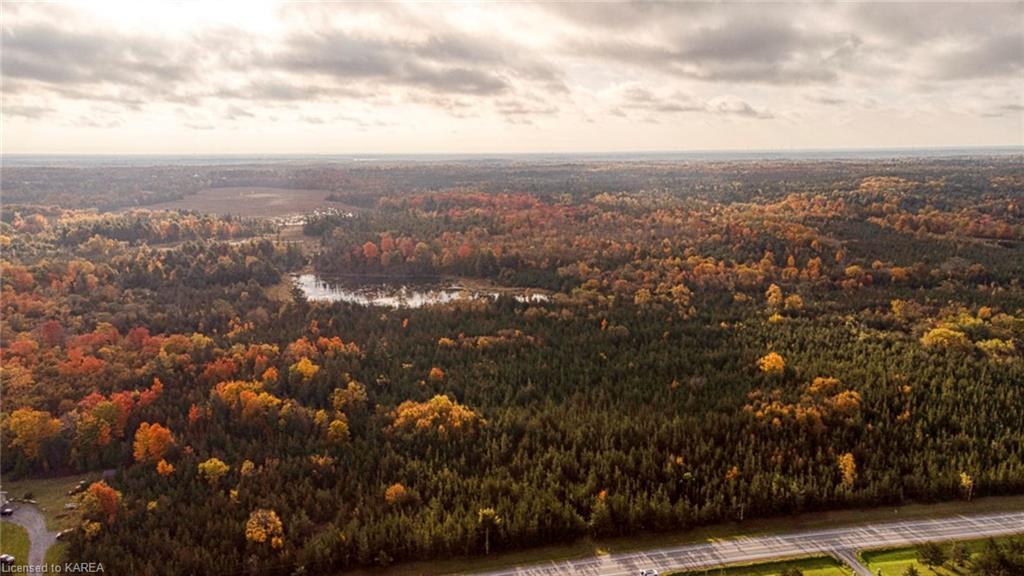 COUNTY ROAD 1, Yarker, Ontario (ID 40174843)