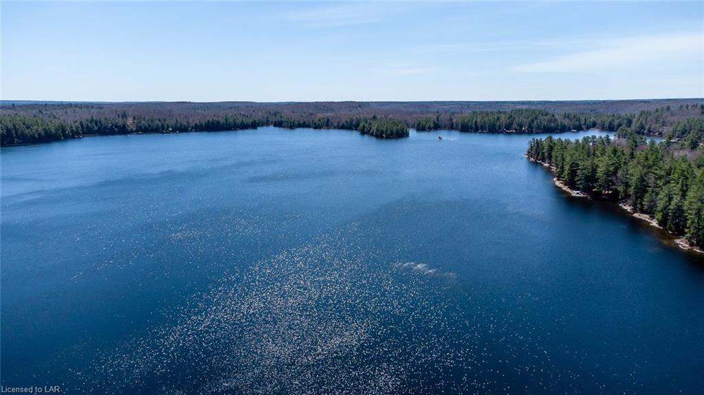 1068 KABAKWA LAKE Trail, Haliburton, Ontario (ID 40105745)
