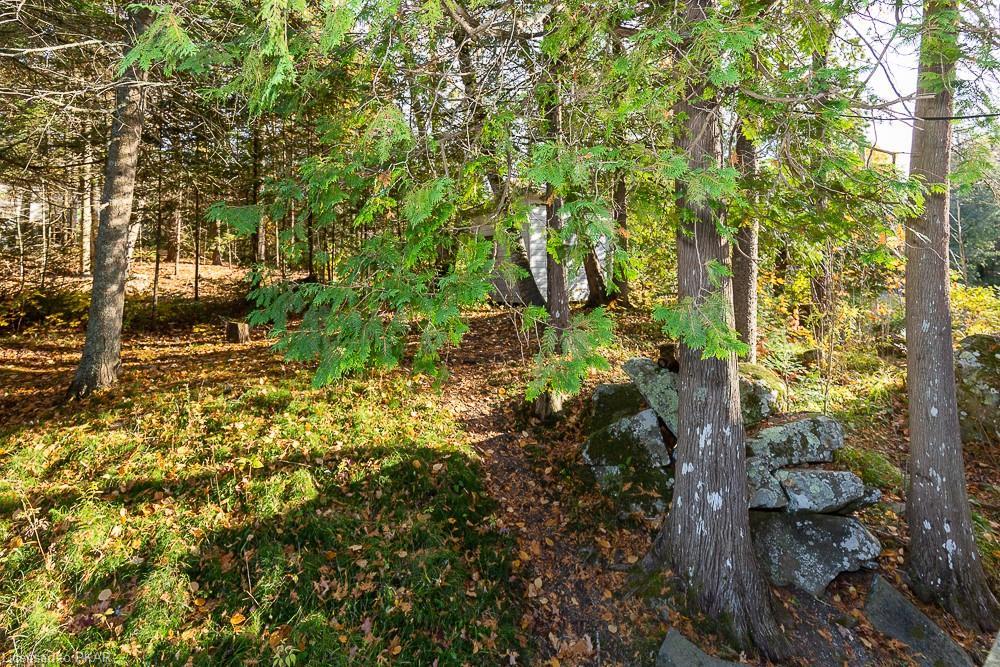 153 KROEKER-OLIVER Lane, Apsley, Ontario (ID 229708)