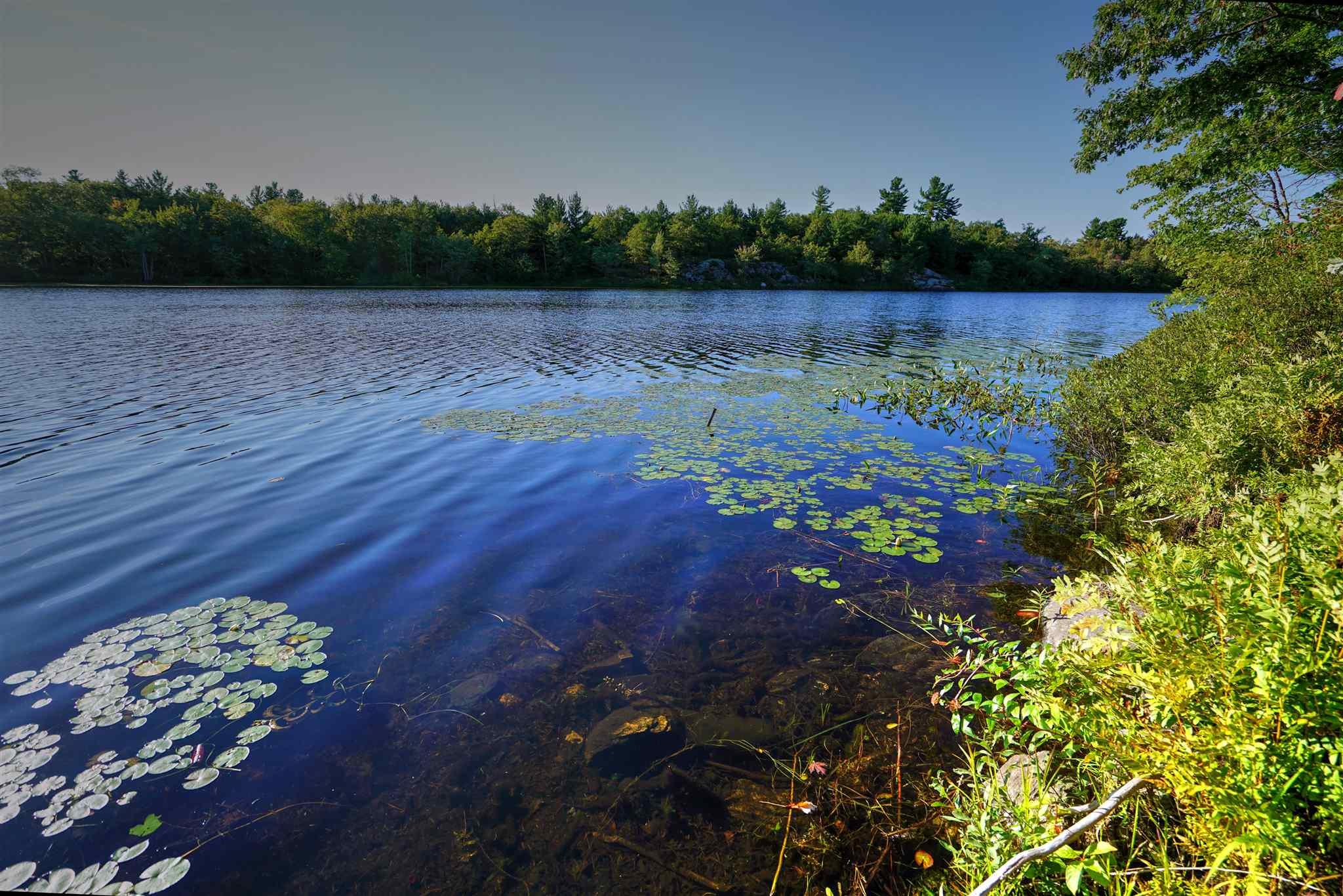 Lot 19 Sheffield Lake Road, Stone Mills, Ontario (ID K20005061)