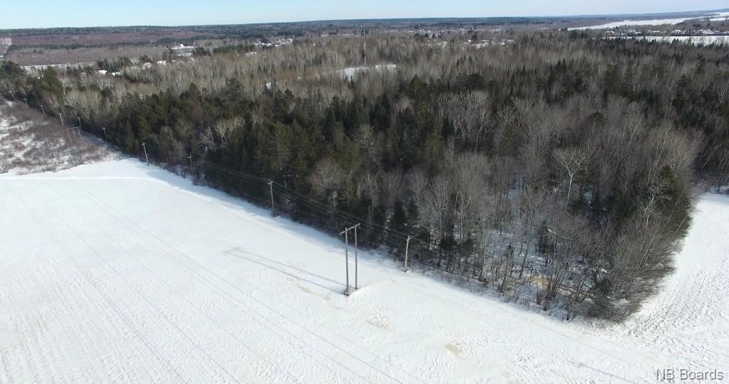 115 Draco Road, Fredericton, New Brunswick (ID NB028256)