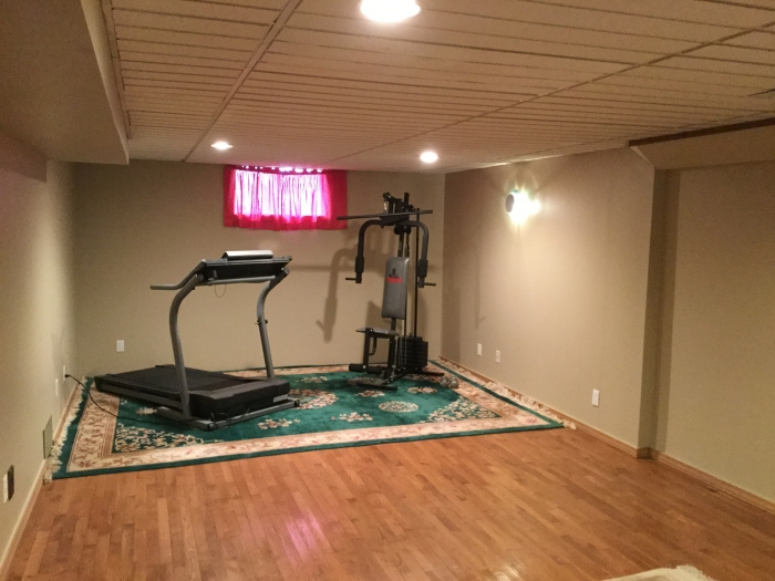 Lower level den/office/work out room