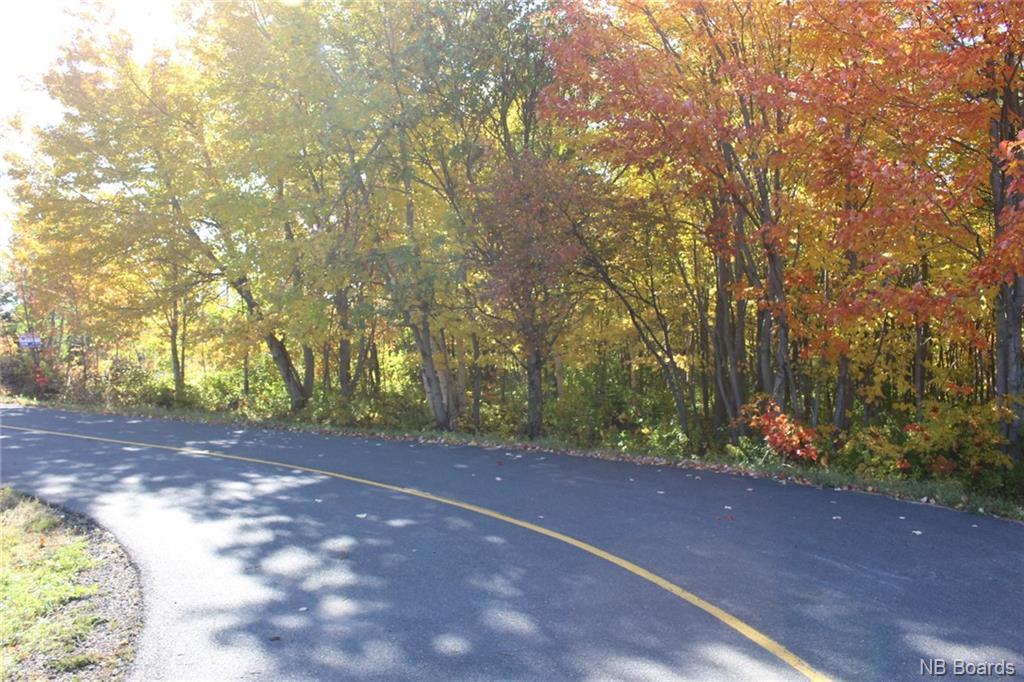 LOT Rue Bicentenaire, Bertrand, New Brunswick (ID NB034525)