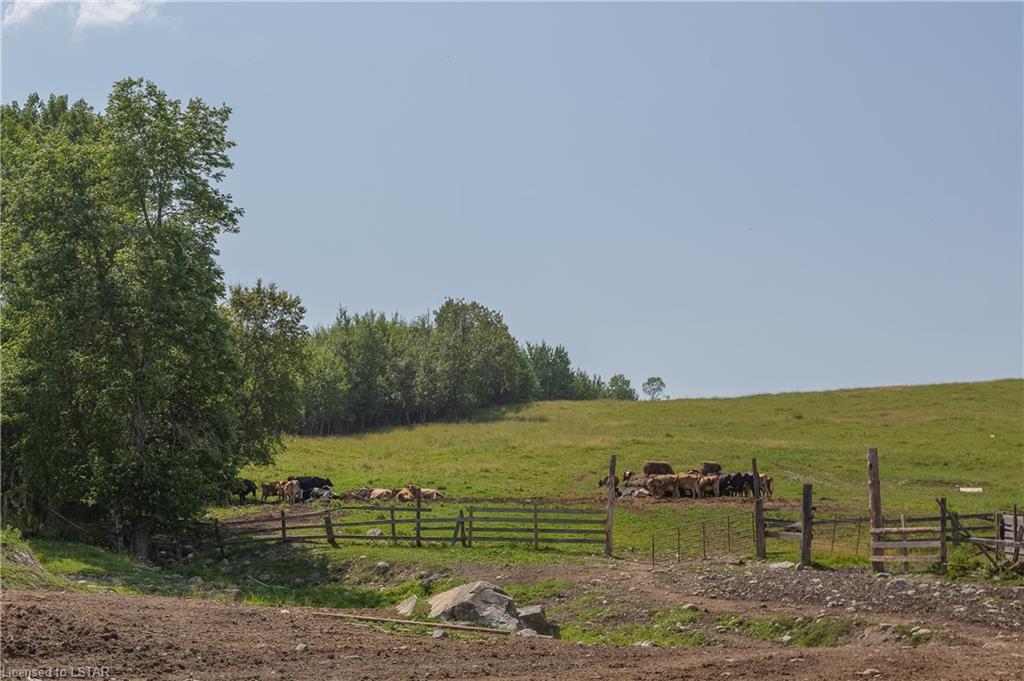 098412 JELLY Road N, New Liskeard, Ontario (ID 40141624)