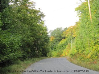 SAVAGE SETTLEMENT RD, Novar, Ontario (ID 521610670)