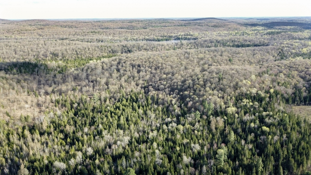 Lot 5, Con 15, Hwy 118, Highlands East, Ontario (ID 239589)