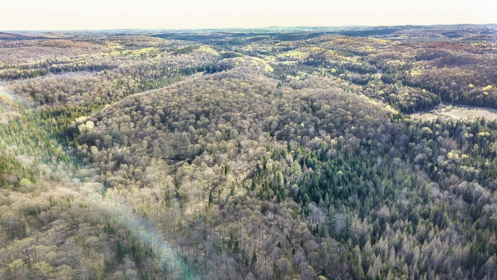 Lots 5 and 6 Con 15, Highway 118, Highlands East, Ontario (ID 201811)
