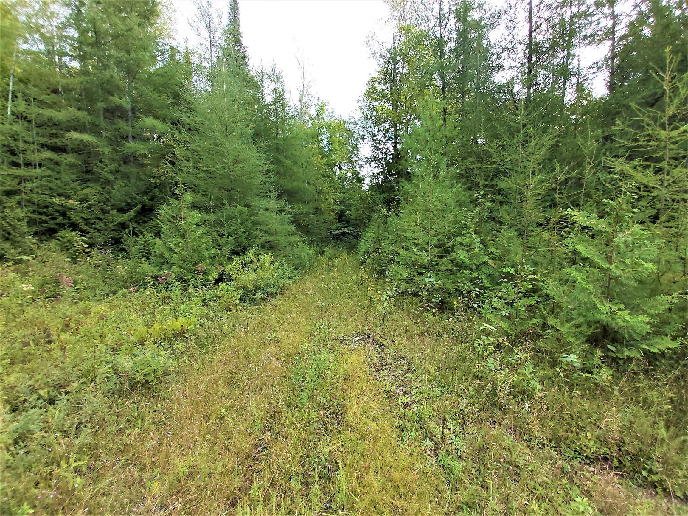 1798 Rd. 506, Cloyne K0H 1K0, North Frontenac, Ontario (ID K20005228)