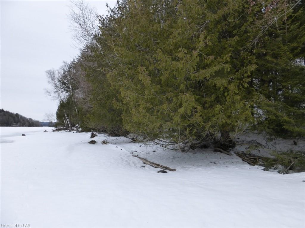 - FRED JONES Road, Haliburton, Ontario (ID 251513)