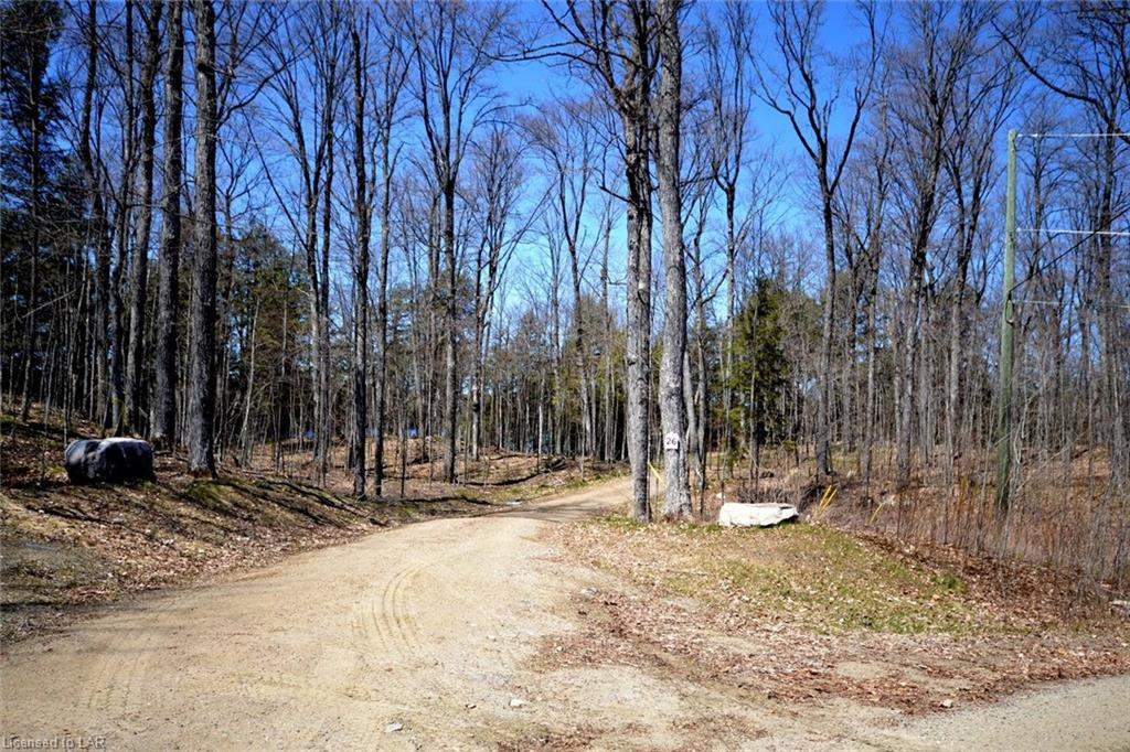 - BURLYWOOD Trail, Haliburton, Ontario (ID 260278)