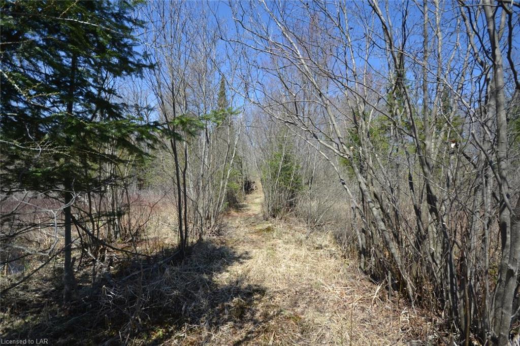 - CINNAMON Lane, Minden Hills, Ontario (ID 257861)