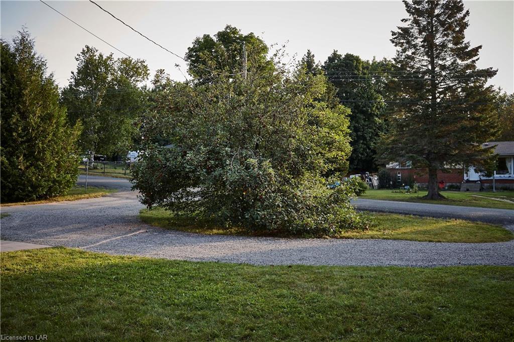 1033 CLEMENT LAKE Road, Wilberforce, Ontario (ID 40159254)