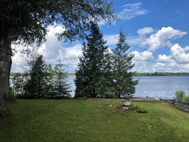 133 Mckelvey Beach Rd, Kawartha Lakes, Ontario (ID X4852573)