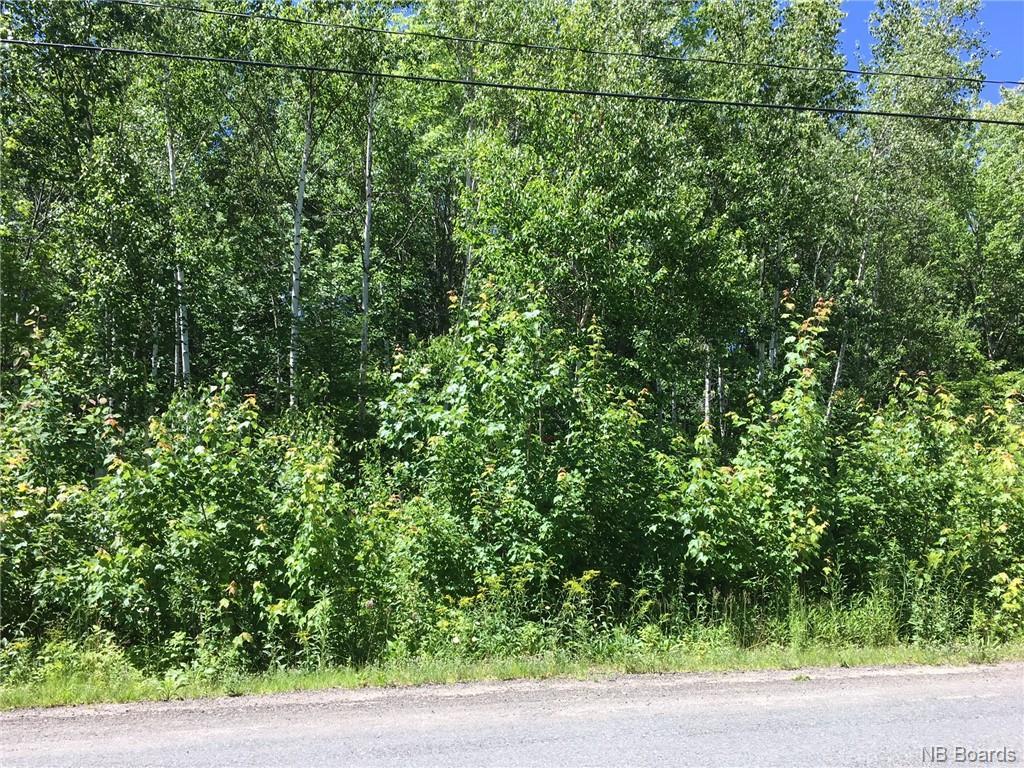 44 Burton Evergreen Drive, Burton, New Brunswick (ID NB055460)