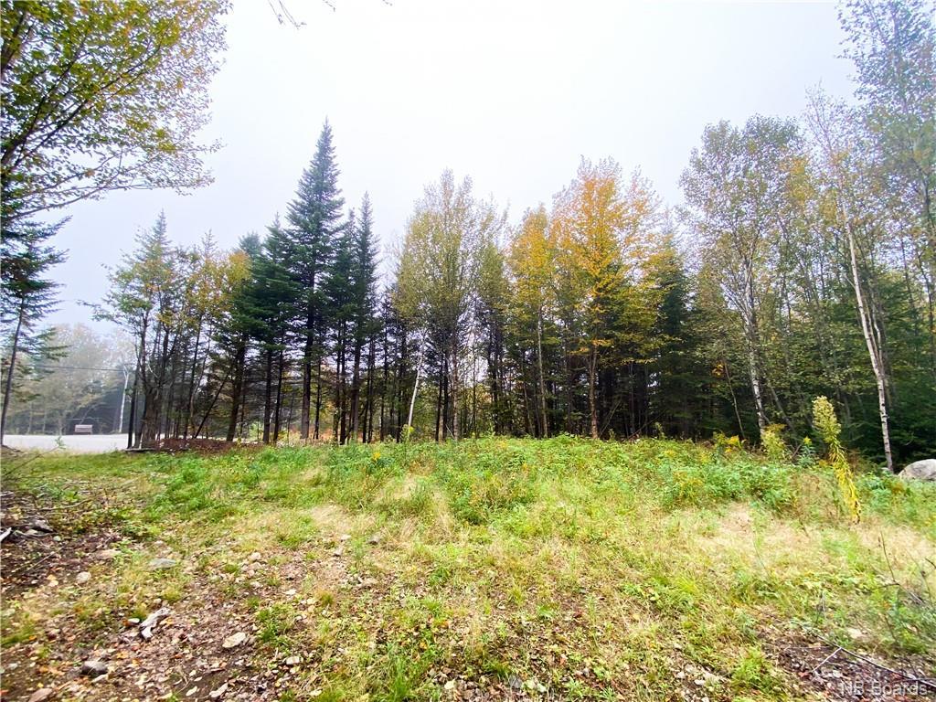 Vacant Lot #401 Grove Hill, Grove Hill New Brunswick, Canada