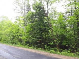 NORTH SHORE Road, Haliburton Ontario, Canada