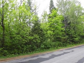 NORTH SHORE Road, Haliburton Ontario