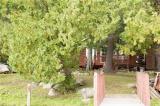 54 PEEL Drive Unit# 3, Coboconk Ontario
