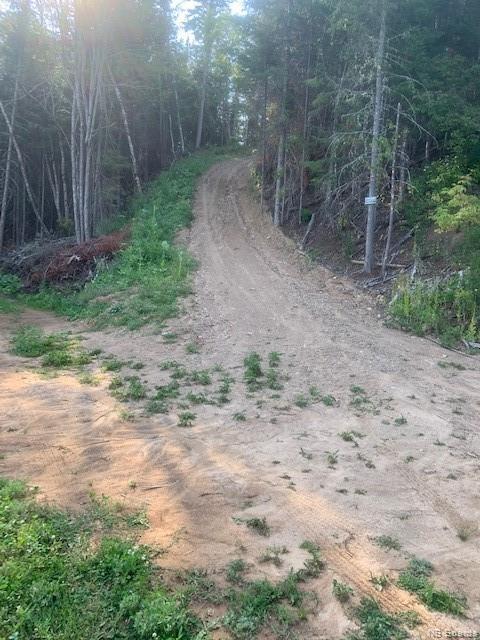 1370 Route 390, Gladwyn, New Brunswick, Canada