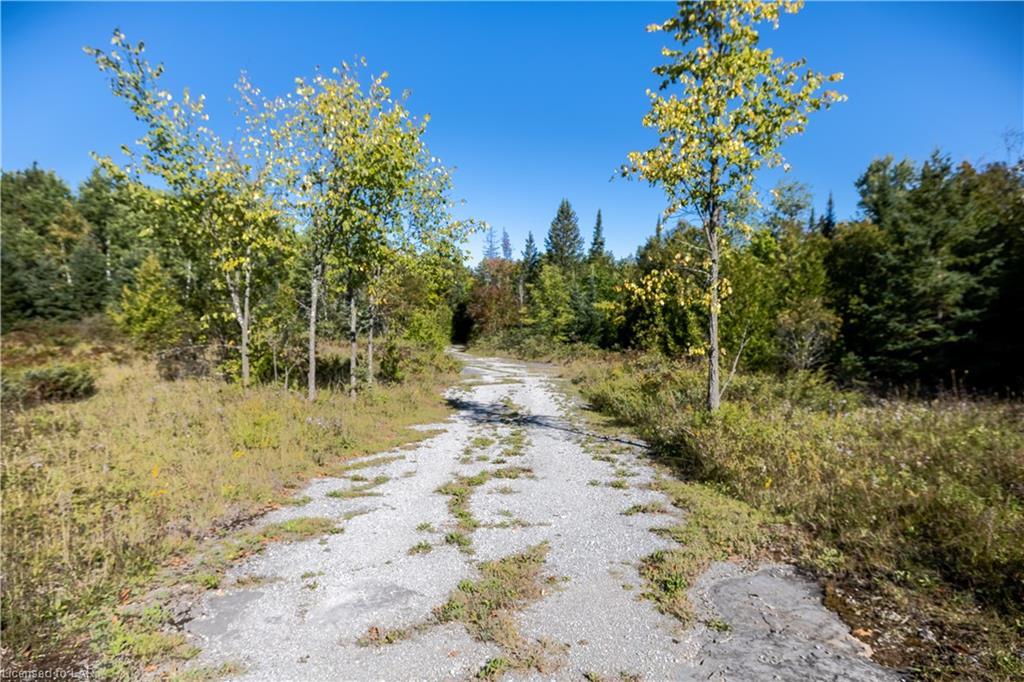 153 North Mountain Road, Kirkfield Ontario, Canada