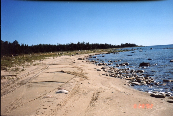 Lot 10, Concession 12, Manitoulin Island